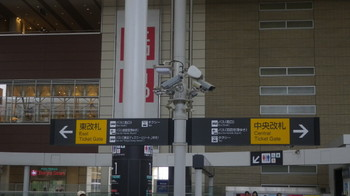 IMGP0021-1.JPG